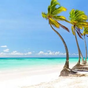 Punta Cana solo terrestre